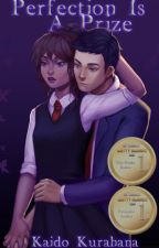 Perfection Is A Prize (A Tim Drake/Robin Fanfiction) [Young Justice] by KaidoKurahana