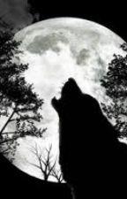 A Strange Wolfy Love Story. by VanillaCupcake910