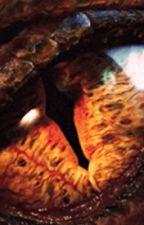 Dragon Changer (a Hobbit fanfic) by lucybird