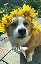 free hugs [matthew espinosa] by lgtbanshee