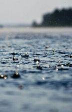 Дождь... by ttinly