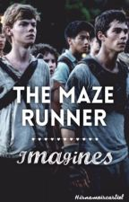 The Maze Runner Imagines by hisnameiscastiel