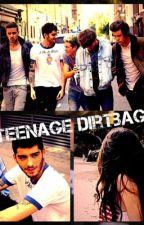 teenage dirtbag (Zayn Malik) by Diane_ZN