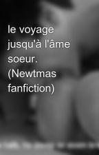 le voyage jusqu'à l'âme soeur. (Newtmas fanfiction) by grunge77