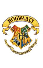Demigods go to Hogwarts by SummersEve3317