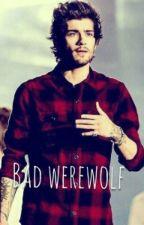 Bad werewolf by ZMfictions