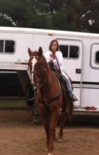 Quarter Horse by rhile226
