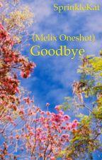 Goodbye (Melix one shot) by SprinkleKat