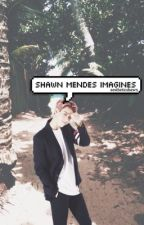 shawn mendes imagines by aestheticshawn