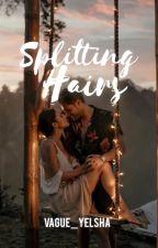 Splitting Hairs by vague_yelhsa