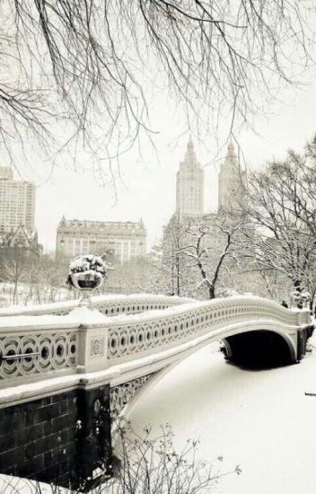 Fall in love in winter