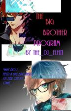 Big Brother Program by The_DJ_Elfin
