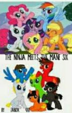 The Ninja Meets The Mane Six [On Hold] by Nature_Adventures