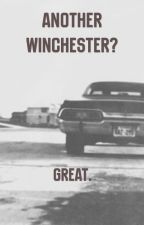 Another Winchester? Great by GlendaCastro