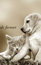friendship qoutes by Injeshin