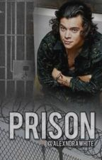Prison |Harry Styles| SK by AlexndraWhite