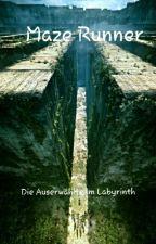 Maze Runner - Die Auserwählte im Labyrinth by ElaSangster_HL