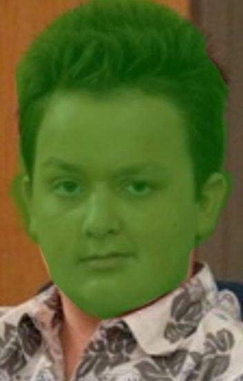 Shrek And Gibby Lets Make A Baby Bend Ogre Wattpad