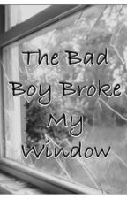 The Bad Boy Broke My Window by stelana_01