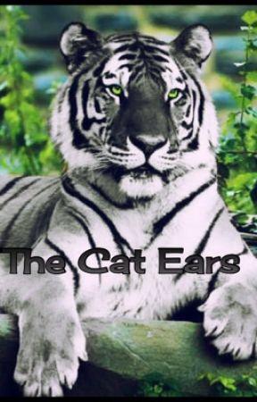 cat ears by dream13211