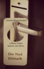 Do Not Disturb. (Harry Styles mature one-shot) by kxylyn