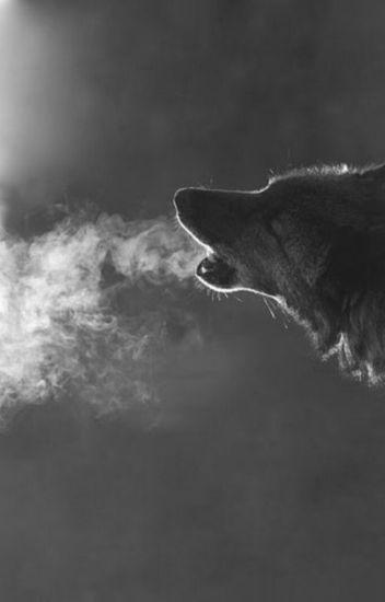 Awesome Werewolf books of Wattpad