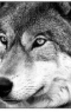 волк или кто by Uol4uthaAlina