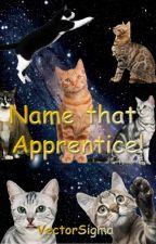 Name that Apprentice! by VectorSigma