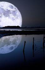 Leyendo la Luna en Braille by YamilSrl