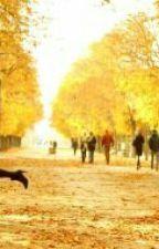 Autumn In paris by ismiariyati1