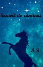 Recueil de citations by SarahBourguignon