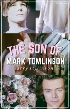 The Son Of Mark Tomlinson (Larry Stylinson Fanfic AU Daddy!Kink) by loumybear