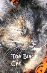 The Black Cat by OrangeHamster123