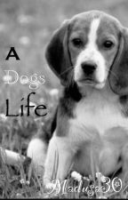 A Dogs Life by Madusa30