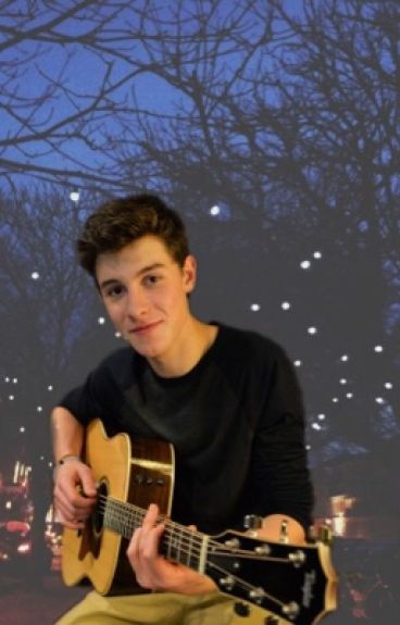 My bully is Shawn Mendes.