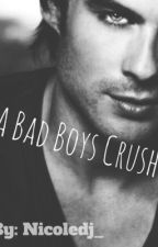 A Bad Boys Crush by nicoledj_