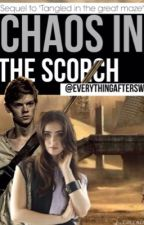 Chaos in the Scorch || Newt Fanfic Sequel by everythingaftersws