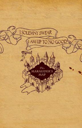 George Weasley x Reader One Shots by StarlightInHerEyes