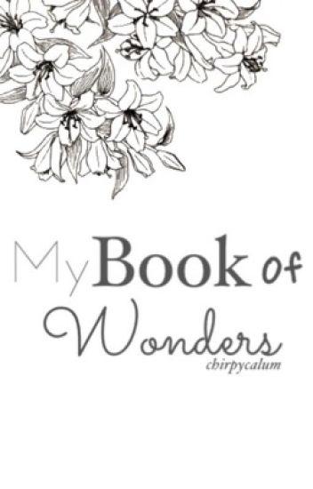my book of wonders