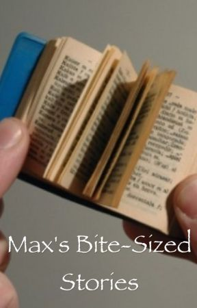 Max's Bite-Sized Stories by MaxTheChristian