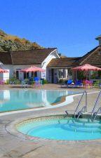 A-1 Pool Service Hilton Head Island: Website by a1-poolservice