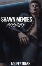 Shawn Mendes Imagines (SHAWNSPANDA) by aqueertrash