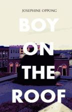 Boy On The Roof by callmejojo_