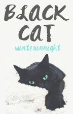 Black Cat by winterinnight