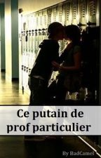 Ce putain de prof particulier - A.I. by TheQueen-A