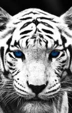 Tiger's Ending by princessmaysinger