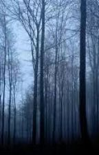 THE HAUNTED FOREST by harmanvirdi