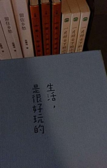 Đọc Truyện Những trích dẫn hay trong tiểu thuyết và phim - Truyen4U.Net