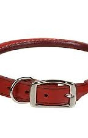Rolled leather dog collar buying guide