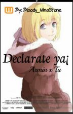 Armin x Reader: Declarate ya¡ (snk) by -NinaPittxre-